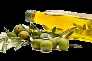 olio-e-olive1